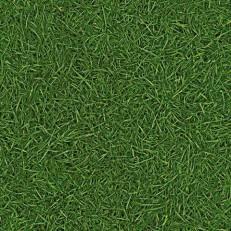 Ivc Bingo Grass 025